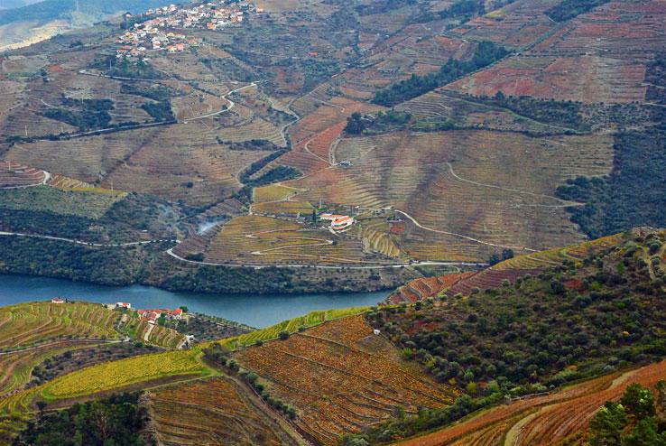 View from Quinta do Crasto