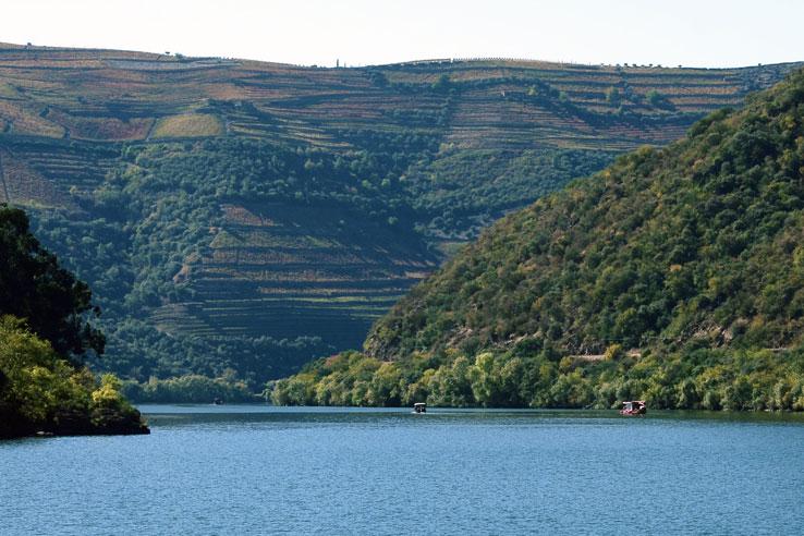 Cruising the Alto Douro
